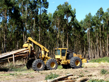 "TIGERCAT 635E in Nutricia OOO ""Torion"""